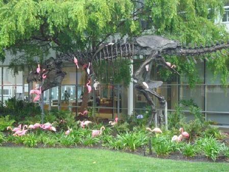 Google Headquarters Dino in Garden - Huffman